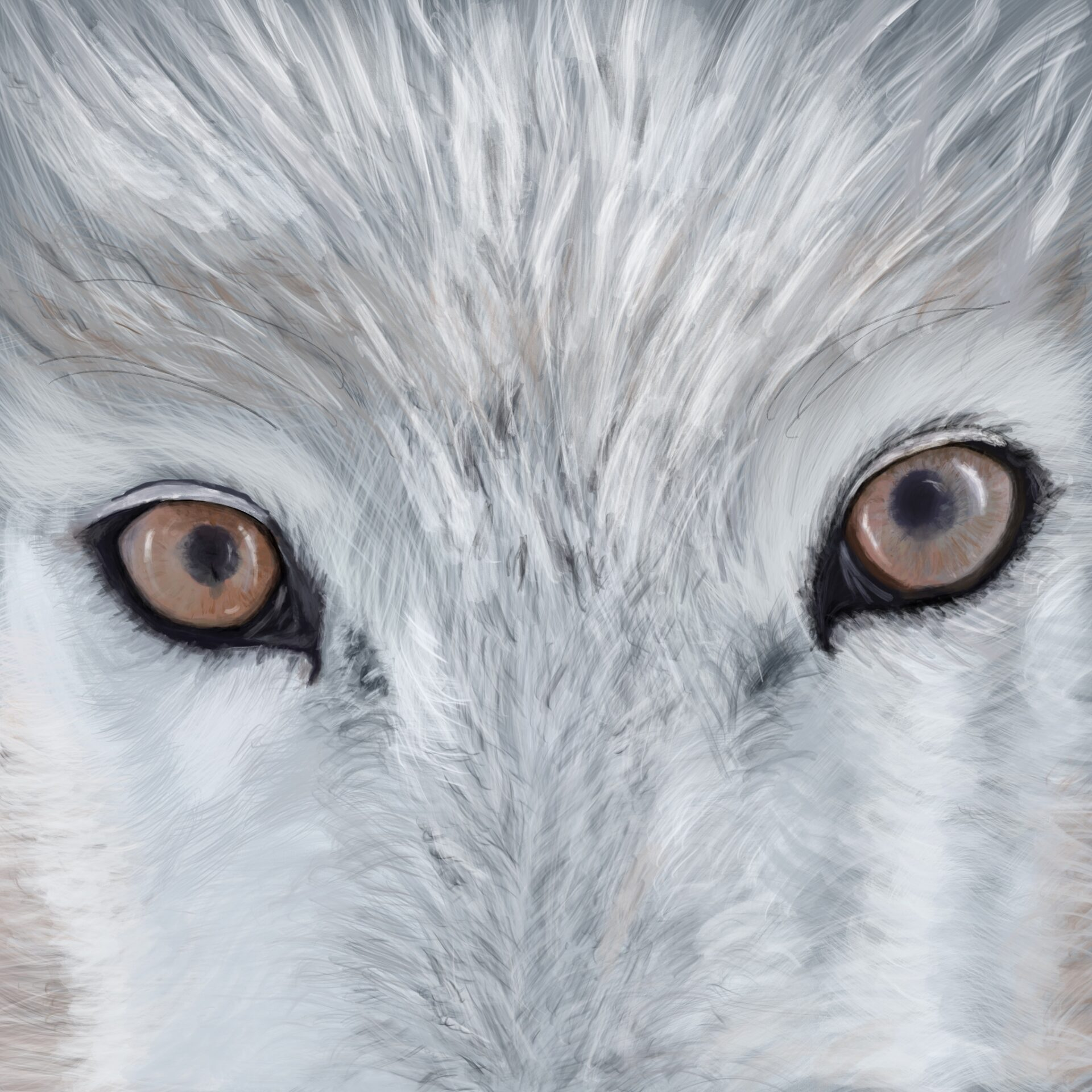 I See You a portrait of a wolf's eyes