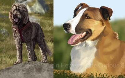 New Pet Portrait Commissions