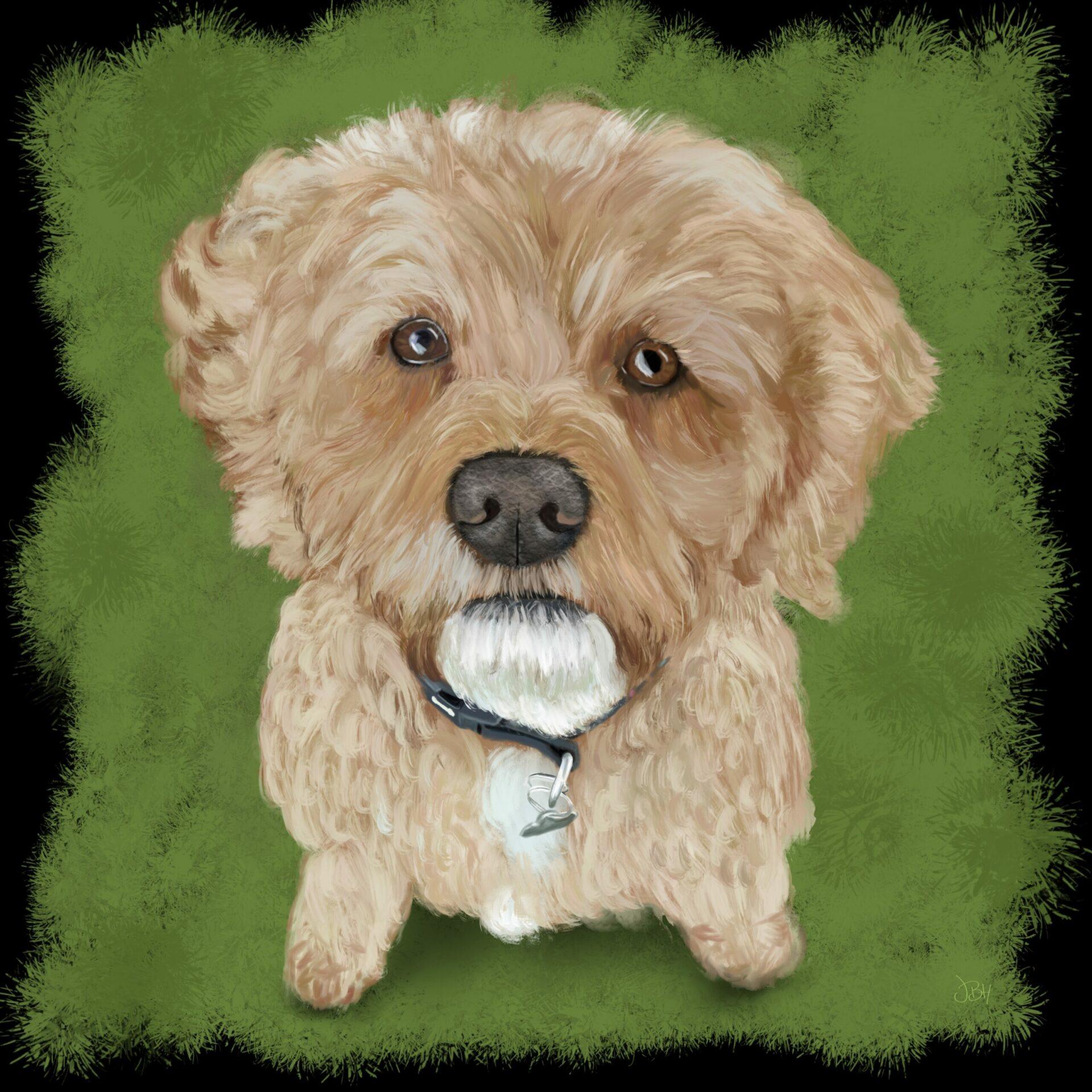 Ginny - Pet Portrait 2