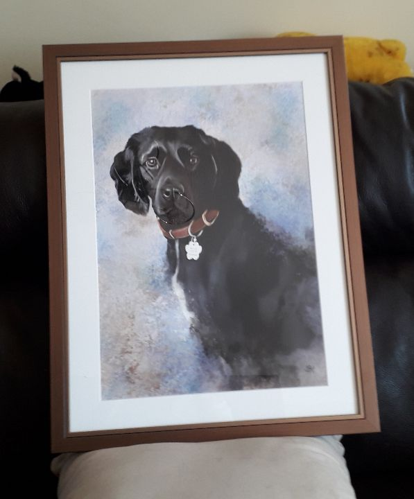 customer photo of framed Bonnie pet portrait